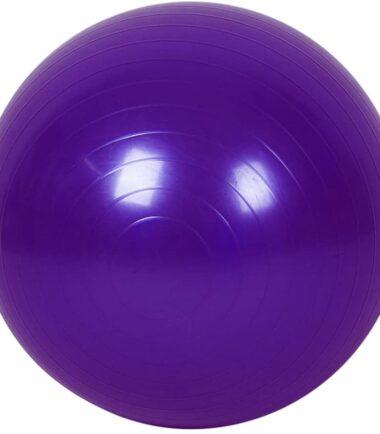 PELOTA GYM BALL (2)
